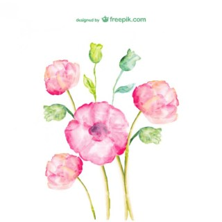 Watercolor Flowers Free Design Free Vector