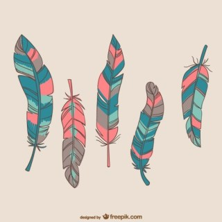Colorful Bird Feathers Free Vectors