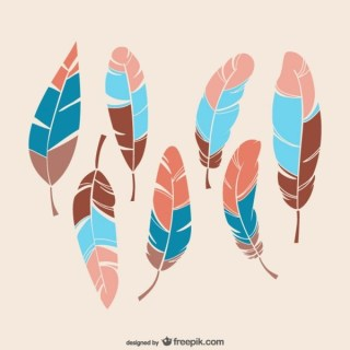 Colorful Feathers Free Vectors