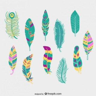 Colorful Feathers Pack Free Vectors