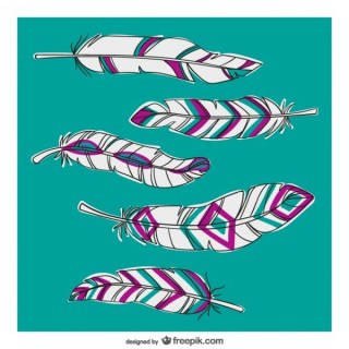 Feathers with Abstract Patterns Free Vectors