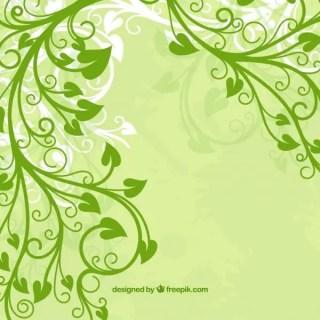 Green Leaf Flower Free Vectors