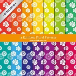 Rainbow Floral Patterns Free Vectors