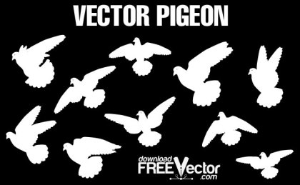 Pigeons Free Vector