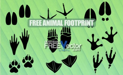 Animal Footprint Free Vector