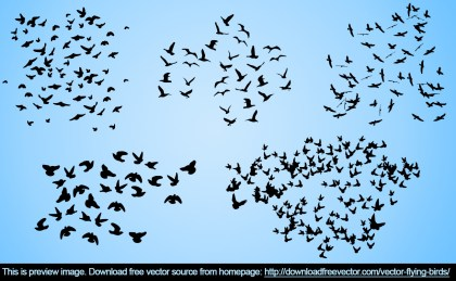 Flying Birds Free Vector