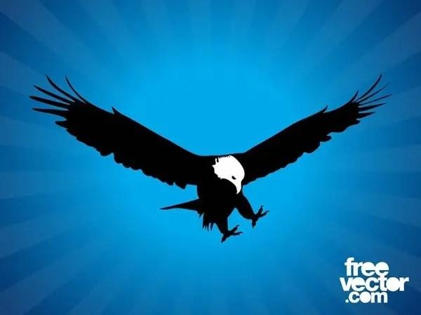 Bald Eagle Silhouette Free Vector