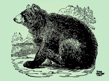Bear Illustration Free Vector
