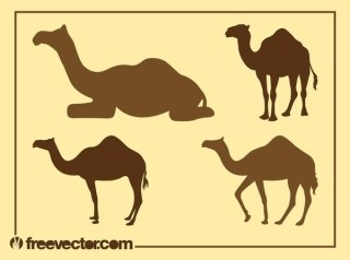 Camel Silhouettes Free Vector