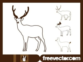 Deer Outlines Free Vector