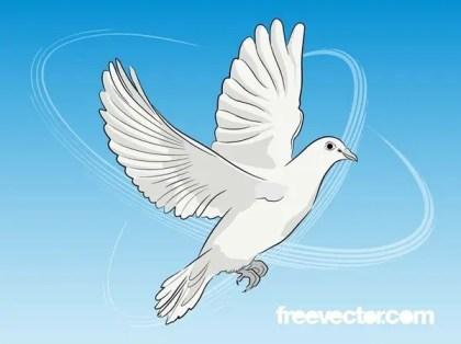 Dove Free Vector
