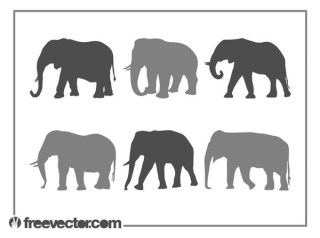 Elephants Silhouette Set Free Vector