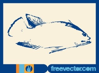 Fish Sketch Free Vector