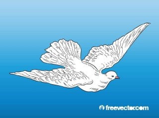 Flying Dove Free Vector