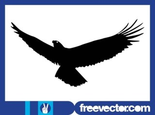 Flying Eagle Silhouette Free Vector