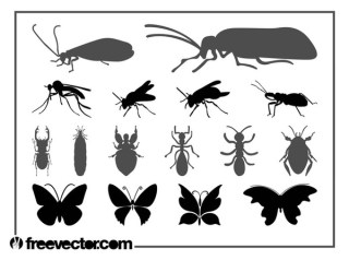 Insects Set Free Vector