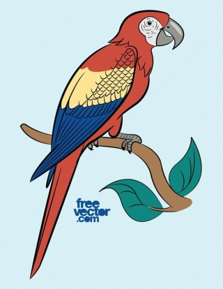 Parrot Free Vector