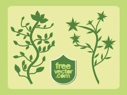 Plants Free Vector