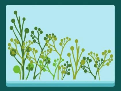 Plants s Free Vector