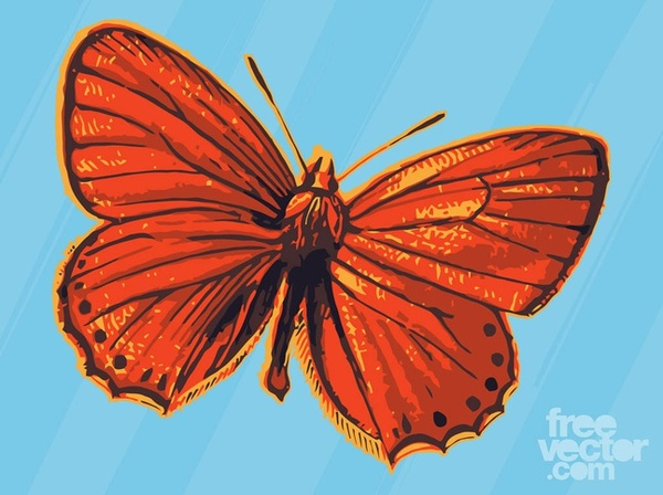 Red Butterfly Free Vector