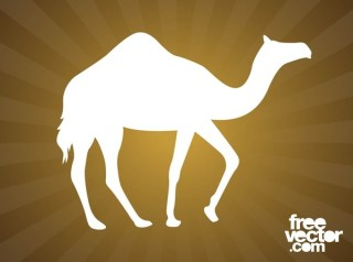 Walking Camel Silhouette Free Vector