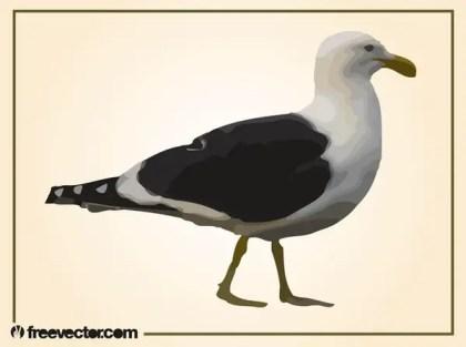Walking Seagull Free Vector