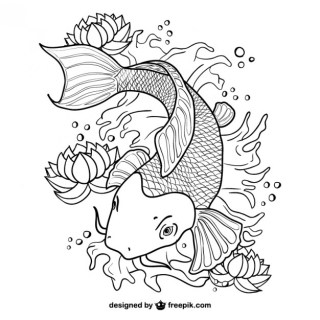 Koi Fish Line Art Free Vector