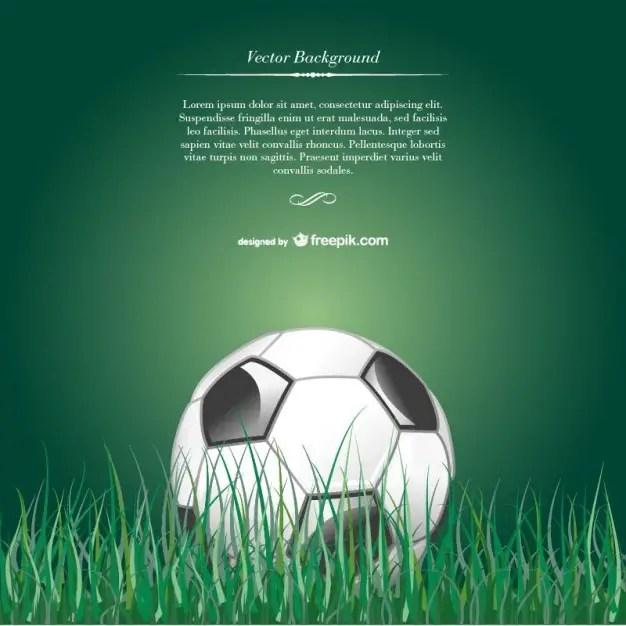 Soccer Ball in Grass Free Vector