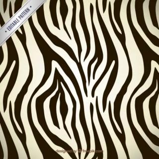 Zebra Pattern Free Vector