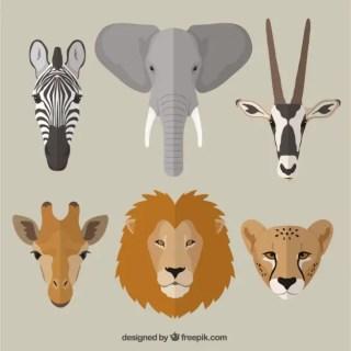 African Animals Free Vector
