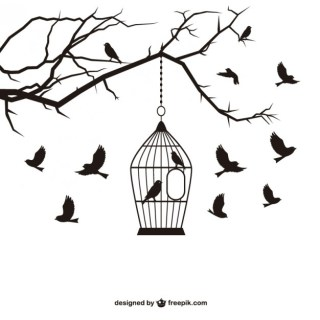 Birds and Cage Free Vector