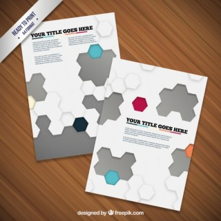 Brochure with Hexagons Free Vector
