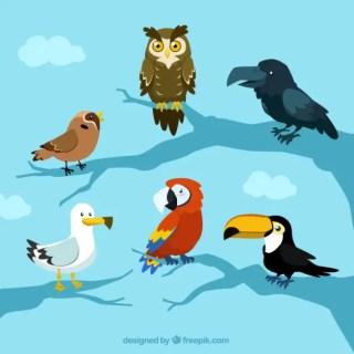 Cartoon Cute Bird Material Free Vector