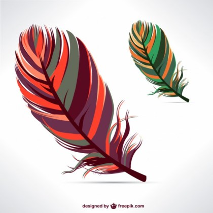 Feathers Elements Free Vector