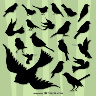 Flying Birds Silhouette Pack Free Vector