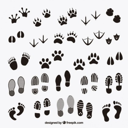 Footprints Shadows of Animals and Human Free Vector