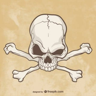 Skull and Bones Drawing Free Vector