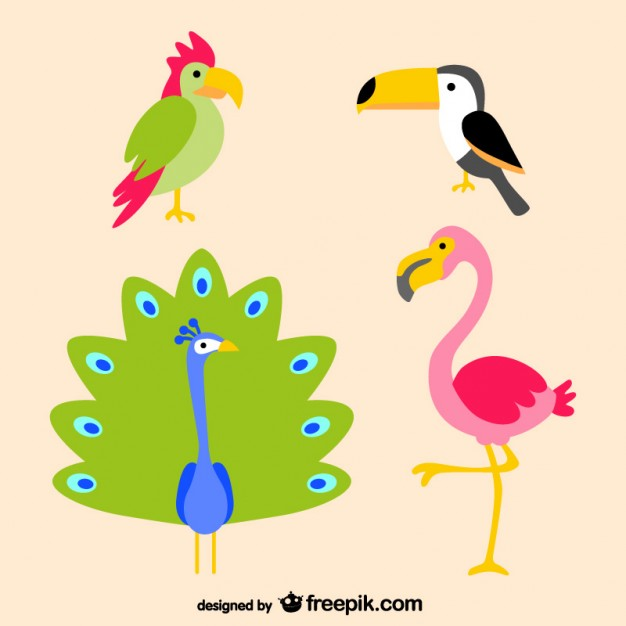 Tropical Birds Free Vector