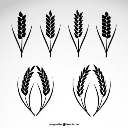 Wheat Collection Icons Free Vector
