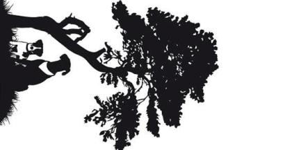 Dogs Sitting Under a Tree Silhouette Vector