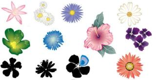 Free Illustrator Flower Vector