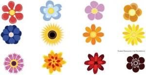 Flowers Vector Resources