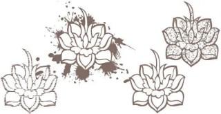 Lotus Flowers Vector