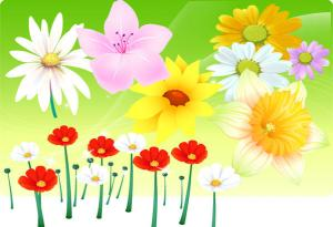 Free Vector Flowers Download
