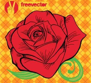 Free Rose Vector Illustration