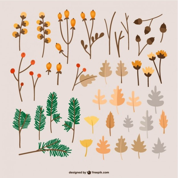 Autumn Leaves Illustrations Free Vector