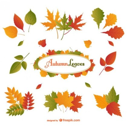 Autumn Leaves Pack Free Vector