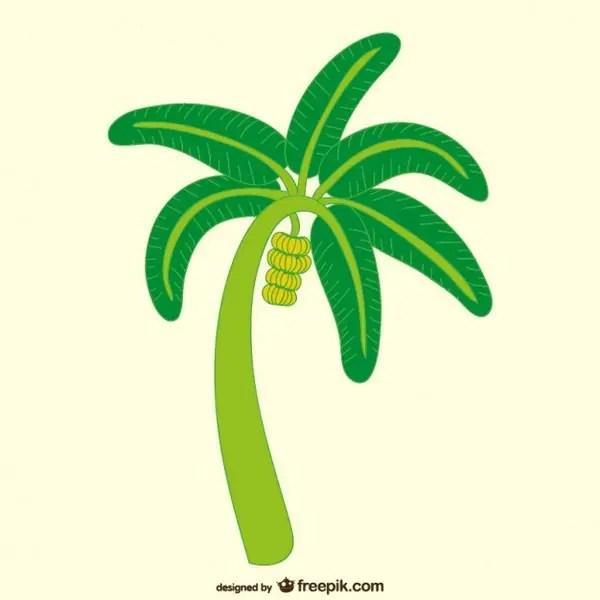 Banana Tree Illustration Free Vector