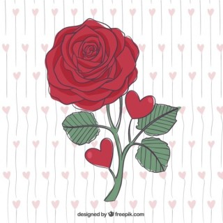 Beautiful Hand Drawn Red Rose Free Vector