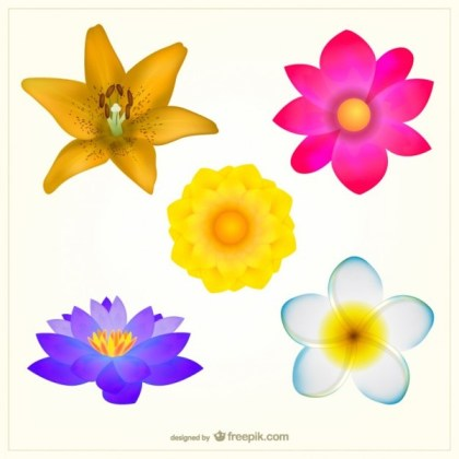 Colorful Flowers Pack Free Vector